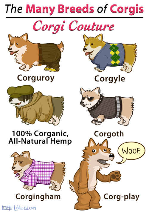 Please don't post this on Corginterest